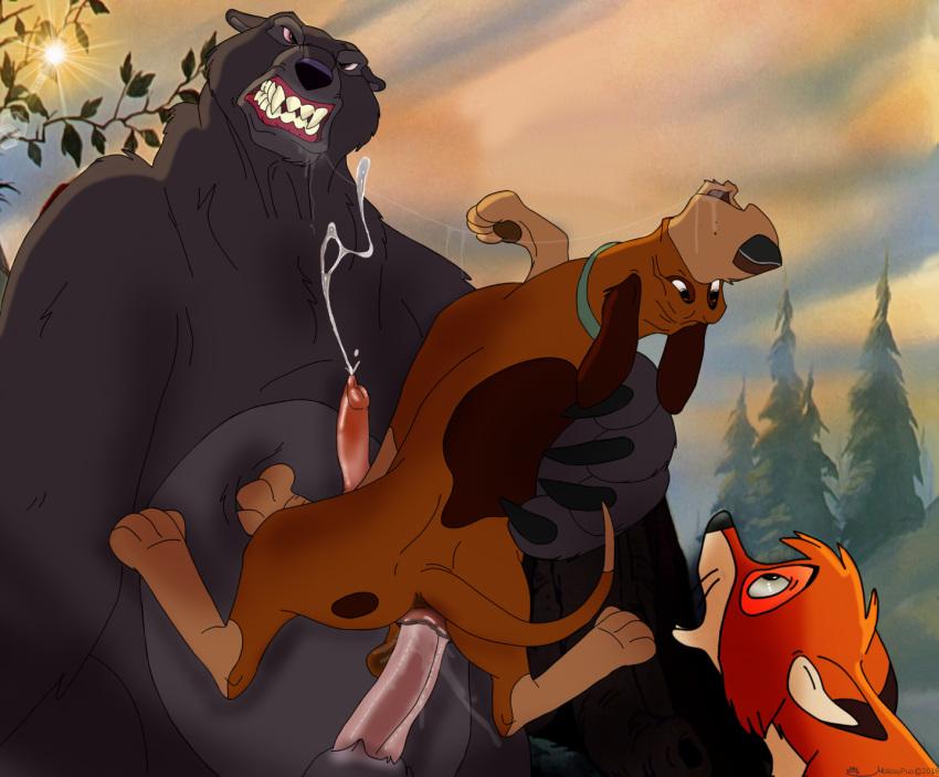 the chief hound fox and Crash bandicoot coco
