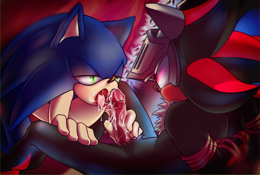 the master sonic and mayhem The looney tunes show xxx